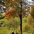 巴克禮公園9.JPG