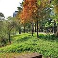 巴克禮公園11.JPG