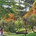 巴克禮公園15.JPG