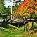 巴克禮公園16.JPG