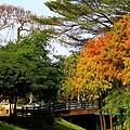 巴克禮公園24.JPG