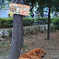 安平林默娘公園24.JPG