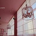 粉紅窩14.JPG