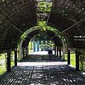 台東森林公園10.JPG