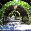 台東森林公園11.JPG