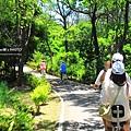 台東森林公園16.JPG