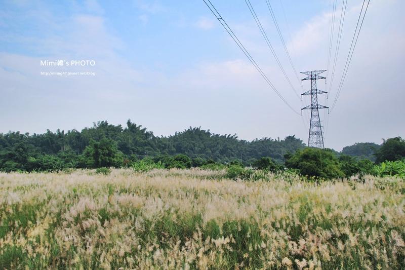 月世界岡林國小2.JPG