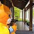 玉井白色教堂32.JPG