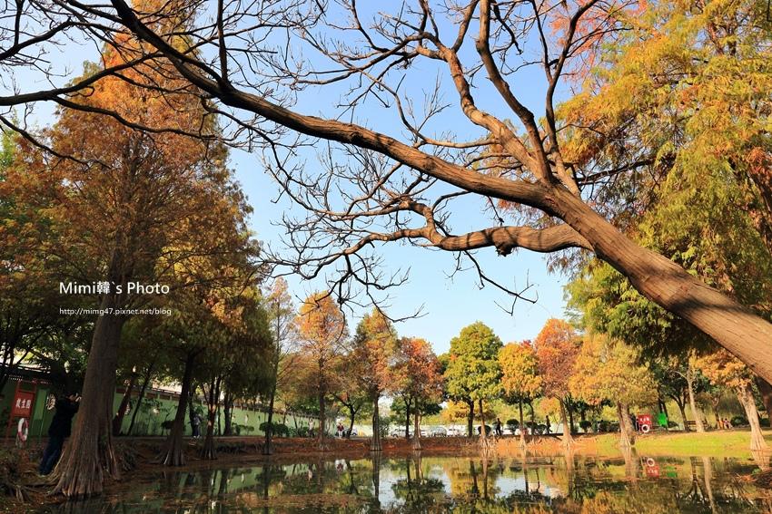 巴克禮公園18.JPG