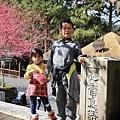 九族櫻花祭33.JPG