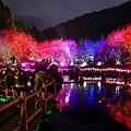 九族櫻花祭57.JPG