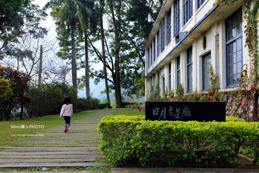 日月老茶廠1.JPG