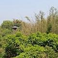 台南景點-大目降小旅行-20.jpg