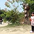 台南景點-大目降小旅行-23.jpg