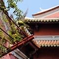 台南景點-中西區小旅行-31.jpg
