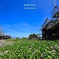 台南景點-漁光島-13.jpg