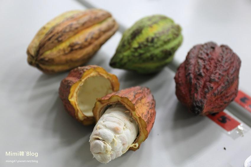 阿信巧克力農場-24.jpg