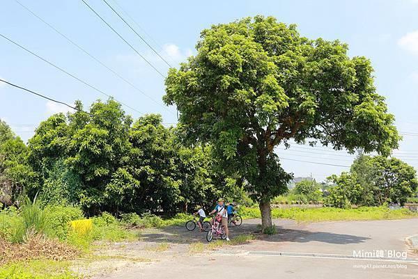 新竹北埔單車-42.jpg