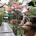 東福寺-7.jpg