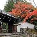 東福寺-8.jpg