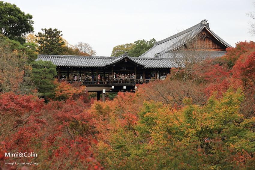 東福寺-10.JPG