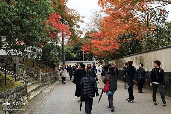 東福寺-9.jpg
