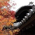 東福寺-19.jpg