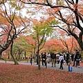 東福寺-24.jpg