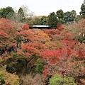 東福寺-18.jpg