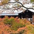 東福寺-27.jpg