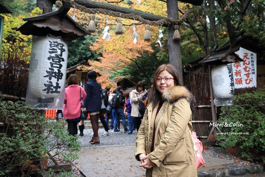 京都嵐山楓葉-1.jpg