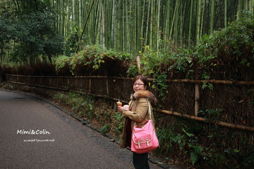 京都嵐山楓葉-19.jpg
