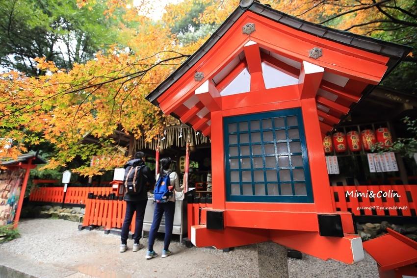 京都嵐山楓葉-29.jpg