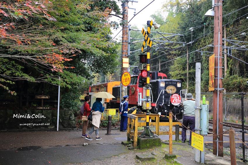 京都嵐山楓葉-30.jpg