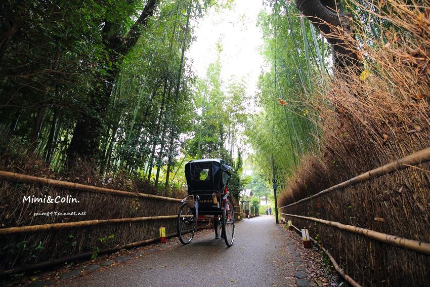 京都嵐山楓葉-32.jpg