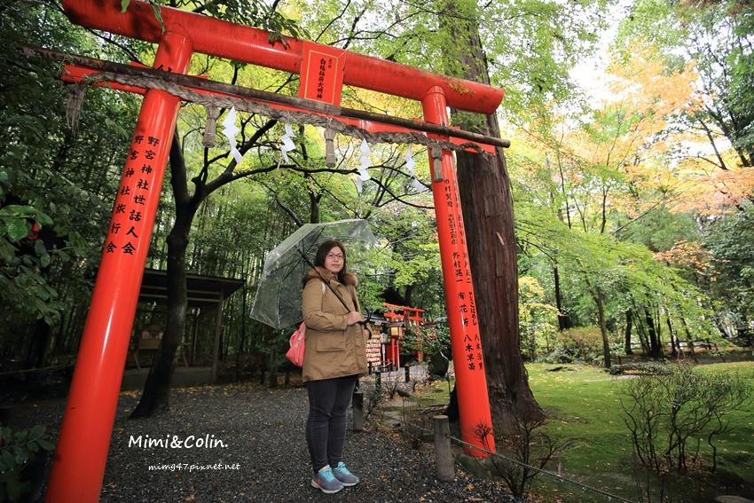 京都嵐山楓葉-28.jpg
