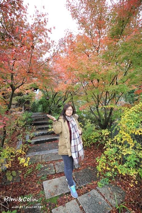 京都嵐山楓葉-36.jpg