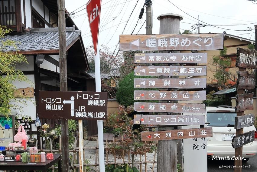 京都嵐山楓葉-35.jpg