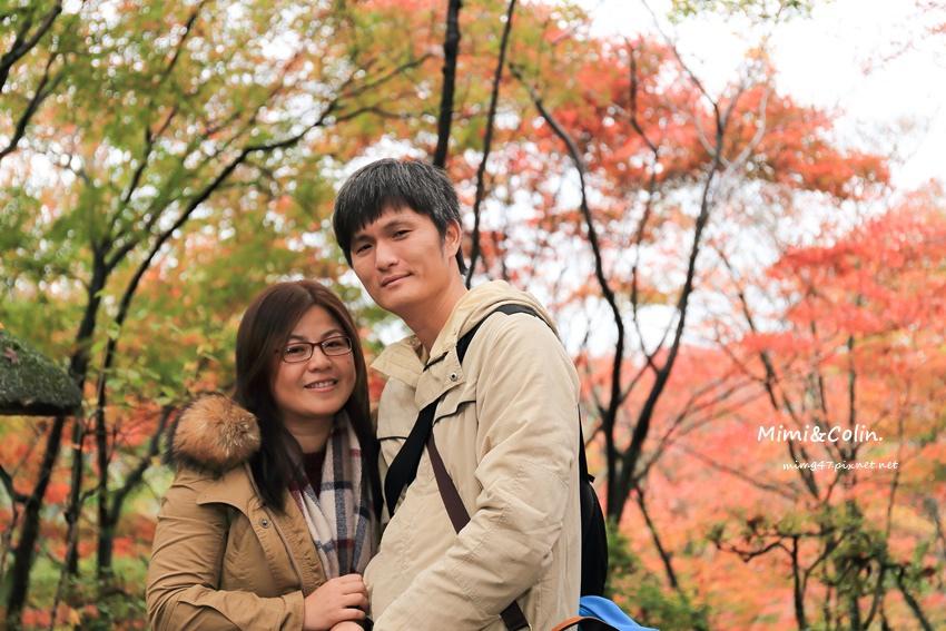 京都嵐山楓葉-41.jpg