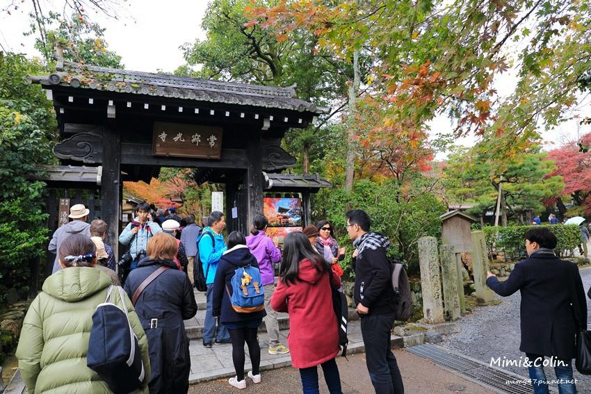 京都嵐山楓葉-39.jpg