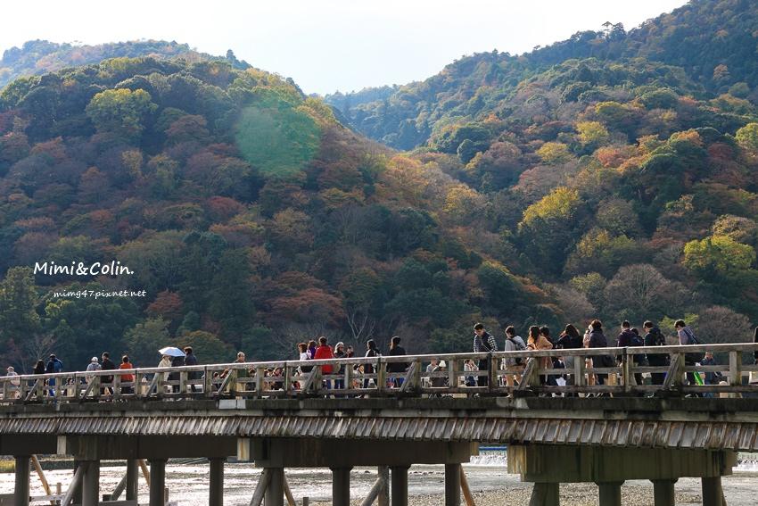 京都嵐山楓葉-45.jpg