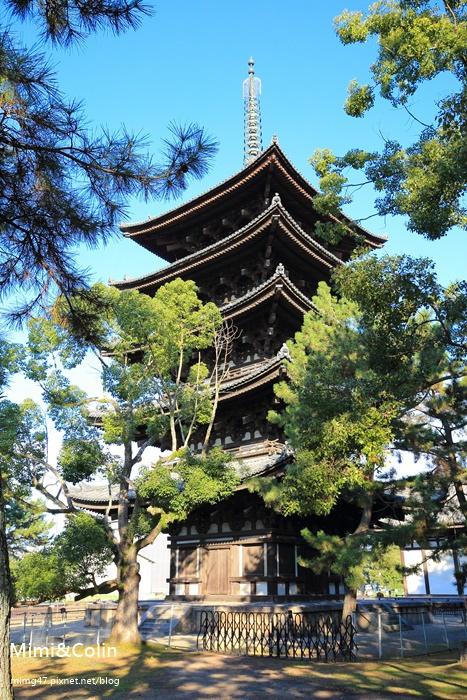 奈良東大寺-13.jpg