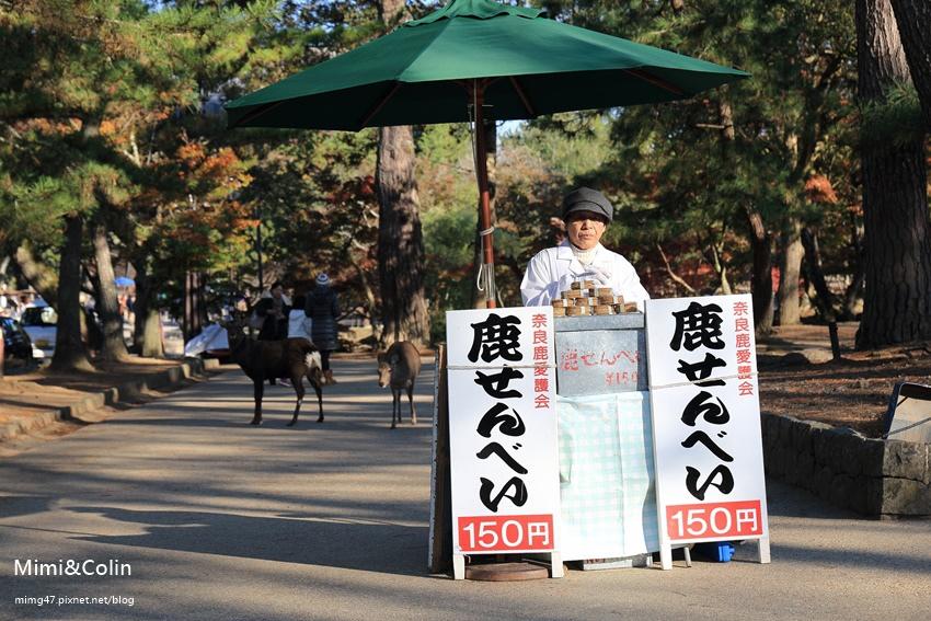 奈良東大寺-17.jpg
