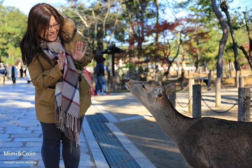 奈良東大寺-29.jpg