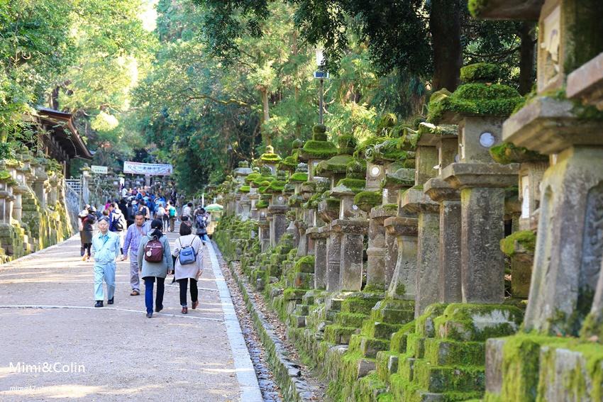 奈良東大寺-37.jpg