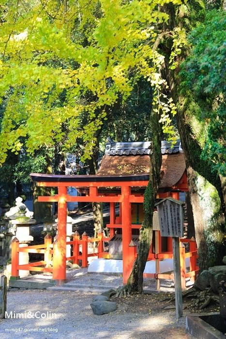 奈良東大寺-41.jpg