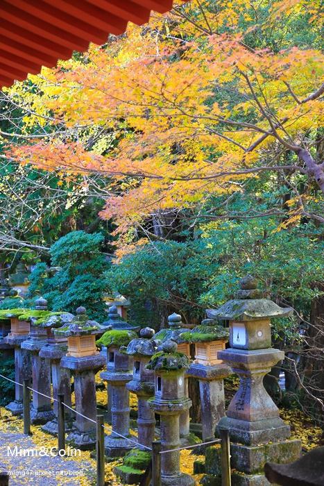 奈良東大寺-43.jpg