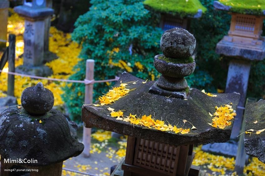 奈良東大寺-44.jpg