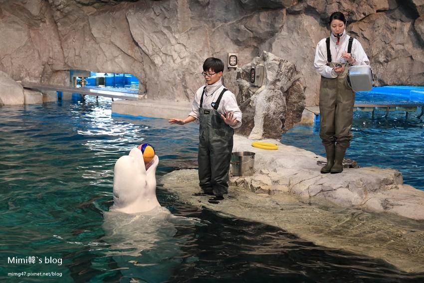 名古屋水族館-17.jpg