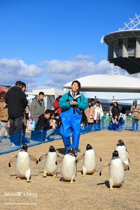 名古屋水族館-27.jpg